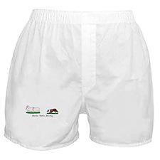 Border Collie Herding Boxer Shorts