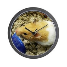 Orange-White Hamster Wall Clock