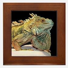 Iguana Photo Framed Tile