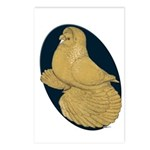 Yellow Trumpeter Postcards (Package of 8)