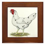 California White Hen Framed Tile