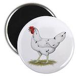"""California White Hen 2.25"""" Magnet (100 pack)"""