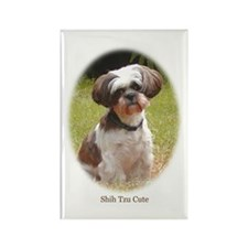 Shih Tzu Cute Rectangle Magnet