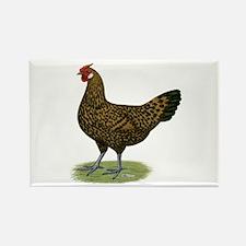 Hamburg Golden Spangled Hen Rectangle Magnet
