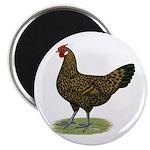 """Hamburg Golden Spangled Hen 2.25"""" Magnet (100"""