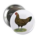 "Hamburg Golden Spangled Hen 2.25"" Button"