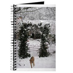 JUBA LEE RR SNOW GARDEN Journal