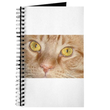 Orange Tabby Cat Journal