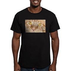 Orange Tabby Cat T