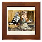 Domestic Flight Pigeons Framed Tile