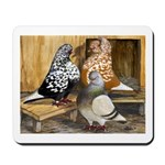 Domestic Flight Pigeons Mousepad