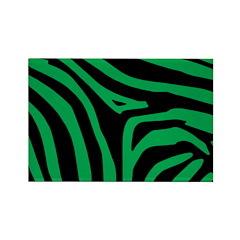 Green Zebra Rectangle Magnet (10 pack)
