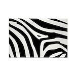 Zebra Rectangle Magnet (10 pack)
