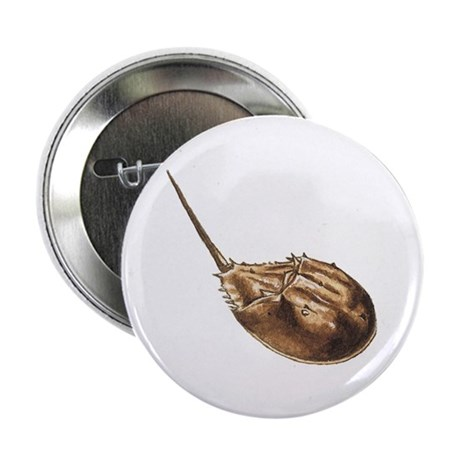 """Horseshoe crab 2.25"""" Button (10 pack)"""
