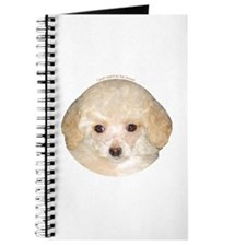 Toy Poodle Journal