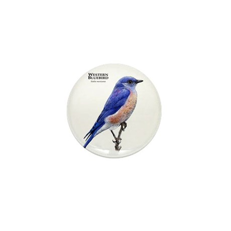 Western Bluebird Mini Button