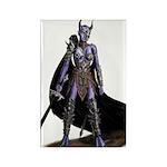 Assassin Demon Rectangle Magnet (10 pack)
