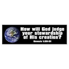 Stewardship (Bumper)