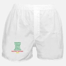 SOUTH AFRICAN STARS Boxer Shorts