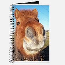 Unique Icelandic pony Journal