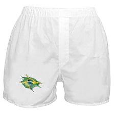 Funky Brazil Flag Boxer Shorts