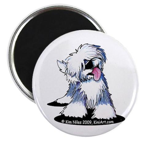 Curious OE Sheepdog Magnet
