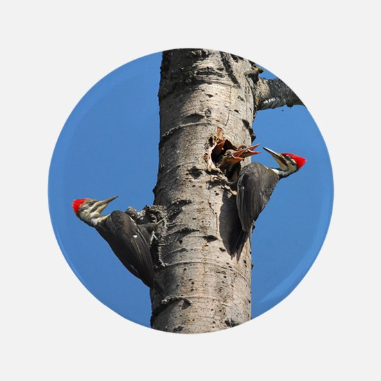 """Pileated Woodpecker Family 3.5"""" Button"""