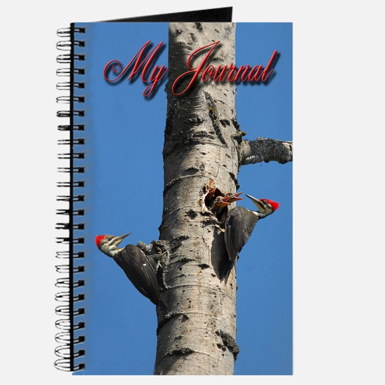 Pileated Woodpecker Family Journal