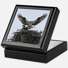 Osprey Pair Keepsake Box
