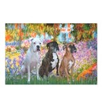 Garden / 3 Boxers Postcards (Package of 8)