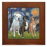 Starry / 3 Boxers Framed Tile