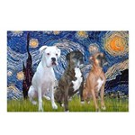 Starry / 3 Boxers Postcards (Package of 8)
