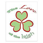 Love of the Irish Small Poster