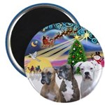 Xmas Magic / 3 Boxers Magnet