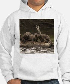River Otter Apparel Hoodie
