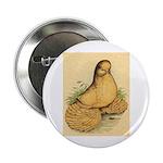 Muffed Tumbler Pigeon Button