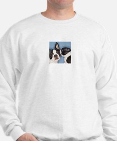 French Bulldog Secret Sweatshirt