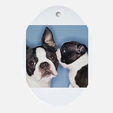 French Bulldog Secret Oval Ornament