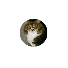 Norwegian Forest Cat<br>Mini Button (10 pack)