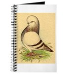Tumbler CL Barred Pigeon Journal