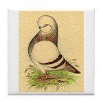 Tumbler CL Barred Pigeon Tile Coaster