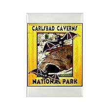 Carlsbad Caverns National Par Rectangle Magnet