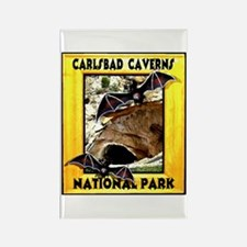 Carlsbad Caverns National Par Rectangle Magnet