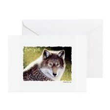 Sunspot Greeting Cards (Pk of 10)