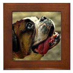 Bull Dog Framed Tile