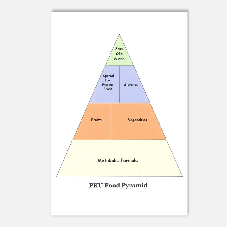 PKU Food Pyramid Postcards (Package of 8)