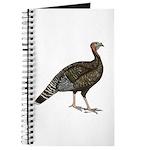 Turkey Standard Bronze Hen Journal