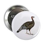 """Turkey Standard Bronze Hen 2.25"""" Button (10 p"""
