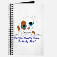 Do You Really Have To Study N Journal