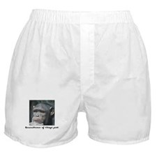 Remembrance of Things Past Boxer Shorts